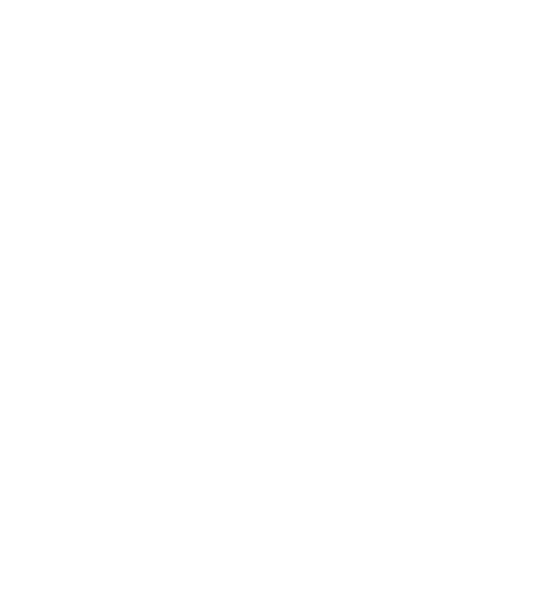 shield-medal-icon